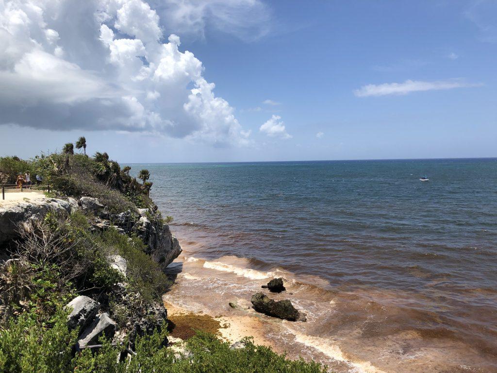 Tulum seagrassum